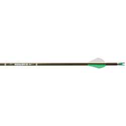 Carbon Express Medallion XR Shaft
