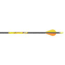 Carbon Express Mayhem Arrow