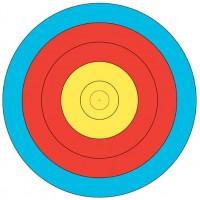 JVD World Archery Target Face 60cm 10-6 Scoring Zones