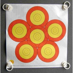 Danage Practice Target Face Multi Centre 6 Spot